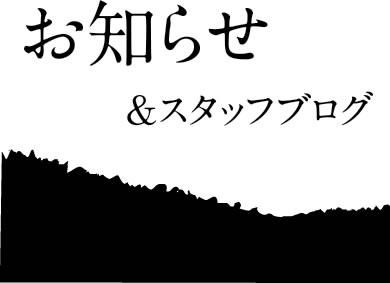 お知らせ&スタッフブログ